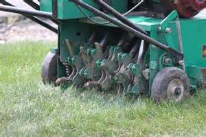 Lawn Aeration and Overseeding in St. Louis