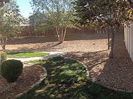 Backyard Landscaping Design After