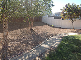 After St. Louis Backyard Landscaping