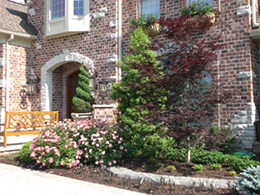 Landscaping with Trees and Shrubs