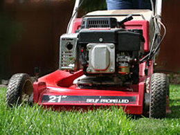 Lawn Mowing & Edging | Lawn Maintenance Services